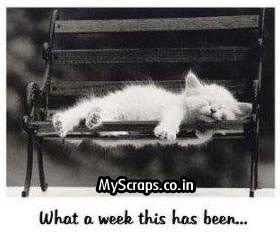 Click for more 'Weekend' scraps!